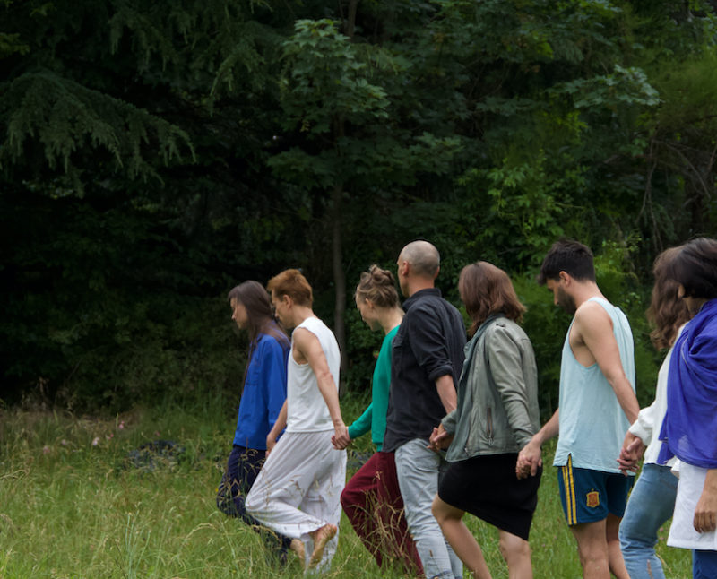 Emilia Giudicelli und Grégoire Paultre Negel: Trans:Plant VERSCHOBEN